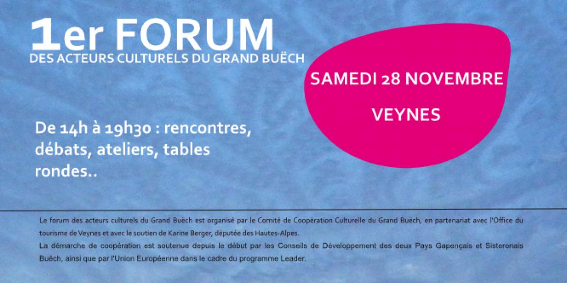 Forum des acteurs culturels du Buëch : samedi 28 novembre 2015